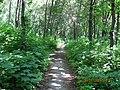 Metallurgov park - panoramio.jpg
