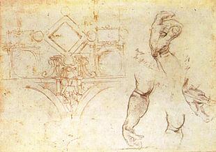 Soffitto A Volta Affrescato : Volta della cappella sistina wikipedia