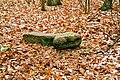 Mirocin Dolny stone cross 2008 P01.jpg