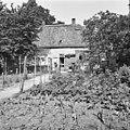 Molenaarshuis, achtergevel - Domburg - 20059313 - RCE.jpg
