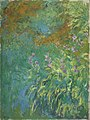 Monet - Irises by the Pond, 1914-1917.jpg