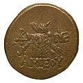 Monnaie en bronze, Pont Amisos, 85-65 BCE, revers.jpg