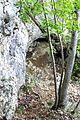 Mont-la-Ville, abri sous roche du Mollendruz, petit abri attenant.jpg