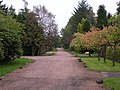 Moor Road, Strathblane - geograph.org.uk - 61680.jpg