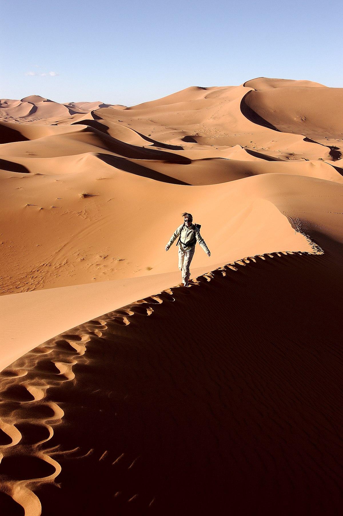 dune - photo #13