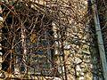 Morsko - ruiny zamku z XIV wieku..jpg