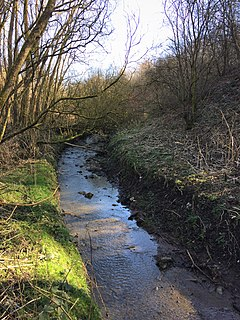 Moston Brook stream in Greater Manchester