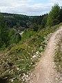 Mountain Bike Trail above High Staindale - geograph.org.uk - 1288937.jpg