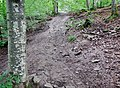 Mountainbike-Downhill-Strecke - panoramio (1).jpg