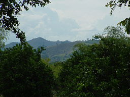 Mountainous region around Armenia, Colombia.jpg