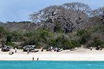 Mozambique 03200 (5144772793).jpg
