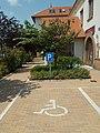 Mozgáskorlátozott parkolóhely a Városházánál és közönséges júdásfa, 2019 Veresegyház.jpg