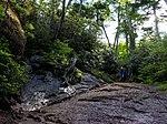 Mt.Kinposan (Kinpohsan) 20130707-P7070075 (9256673010).jpg