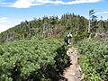 Mt.Kitayokodake S-N.JPG