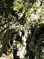 Mudna dol, Hahlići - panoramio (10).jpg