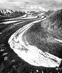 Muldrow Glacier, medial moraine in valley glacier, August 13, 1961 (GLACIERS 5184).jpg