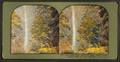 Multinomah Falls, 1000 feet high. Oregon, from Robert N. Dennis collection of stereoscopic views.png