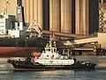 Multratug 5 (tugboat, 2004) IMO 9350161, Calandkanaal pic3.JPG