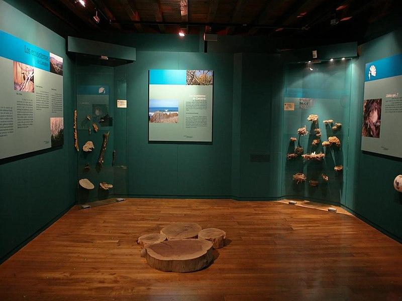 museo-de-la-naturaleza-interior