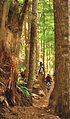 My Public Lands Roadtrip- Sandy River and Sandy Ridge Trail in BLM Oregon (19210580335).jpg