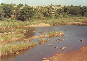 West Nicholson - Mzingwane River at West Nicholson.