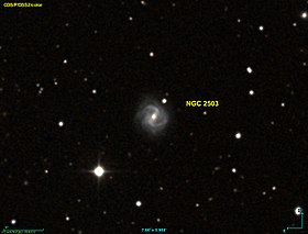 Image illustrative de l'article NGC 2503