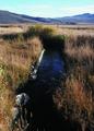 NRCSMT01048 - Montana (4945)(NRCS Photo Gallery).tif