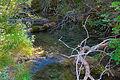 Nacimiento - Rio Cuervo.JPG