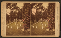 National Military Cemetery, Graves, Nashville, Tenn, by Union View Co..png