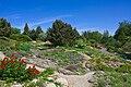 Neuer Botanischer Garten - Alpinum 004.jpg