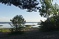 Neva Bay 2020-06-14-3.jpg