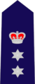 New South Wales State Emergency Service insignia - Region Controller.png