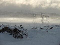New Zealand snow