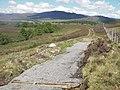 New track to footbridge - geograph.org.uk - 522990.jpg
