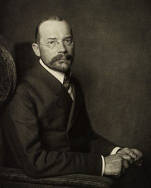 Wilhelm His Jr. - Image: Nicola Perscheid Wilhelm His Internist 1902