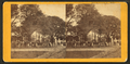 No. 50. Election Scene, Savannah, Nov. 3, - 68, by Wilson, J. N. (Jerome Nelson), 1827-1897.png