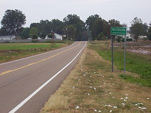 City proper -  An unincorporated town such as Nutbush could not be a city proper, but it can be part of one