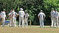 Nuthurst CC v. Henfield CC at Mannings Heath, West Sussex, England 026.jpg