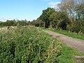 Oaks Drove, Westhay Moor (geograph 2652356).jpg