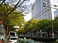 Omotesando - panoramio - kcomiida.jpg