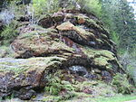 Exposed pillow lava in the Northern Oregon Coast Range