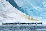 Orne Harbor, Antarctica (24822489592).jpg