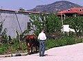 Përmet, Albania - panoramio.jpg