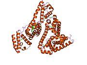 1e7i  human serum albumin