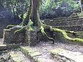 Palenque (229).JPG