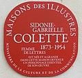 Panneau Maison des Illustres, maison natale de Colette à Saint-Sauveur-en-Puisaye.JPG