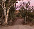 Parachilna Gorge, Flinders Ranges - South Australia (2).jpg