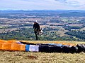 Paragliding in Tamborine Mountain, Queensland, Australia, 2020, 06.jpg