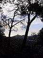 Parc de Vallvidrera 175-7519 IMG.JPG