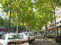 Paris - Avenue Daumesnil.jpg